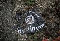 """Флаг радикальной исламистской организации """"Исламское государство Ирака и Леванта"""""""