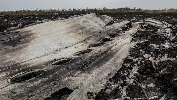 Останки самолета Boeing 777, рухнувшего на Украине