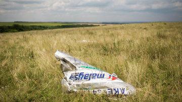 На месте крушения самолета Boeing 777 авиакомпании Malaysia Airlines на Украине. Архивное фото