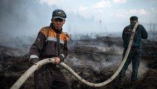 Сотрудники МЧС РФ во время  пожара в Тверской области. Архивное фото