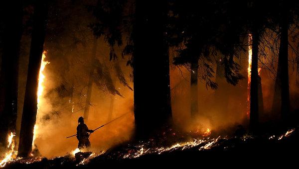 Лесной пожар в Калифорнии, США