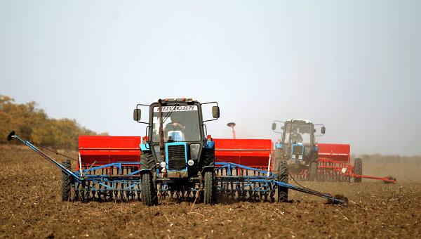 Сев пшеницы в Ставрополе. Архивное фото