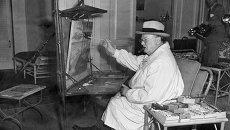 Уинстон Черчилль за занятием живописью