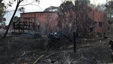 Последствия лесных пожаров в Австралии. Архивное фото
