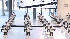 Сто роботов-андроидов станцевали брейк перед публикой в Токио
