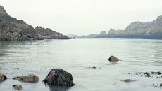 Пролив Ла-Манш. Архивное фото