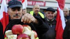 Польские яблоки. Архивное фото