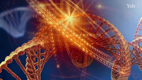 Так художник представил себе молекулу ДНК, которая бомбардируется ультрафиолетом