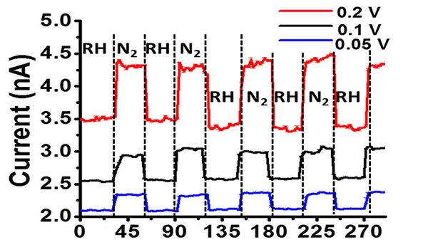 Бактерия-киборг с прикрепленными пластинками графена слева, справа – обычная спора микроба