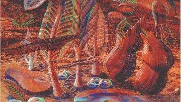 Так художник представил себе жизнь на Земле в докембрийскую эпоху