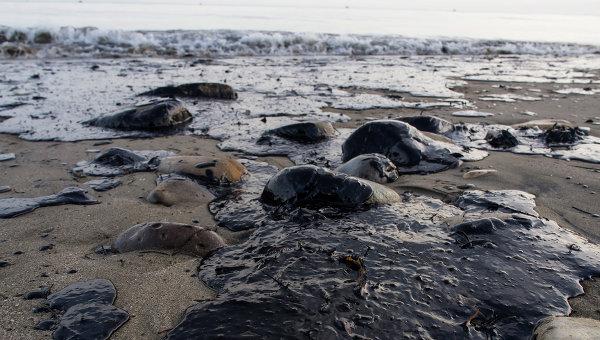 Около 80 тысяч литров нефти вылилось в океан у берегов Калифорнии