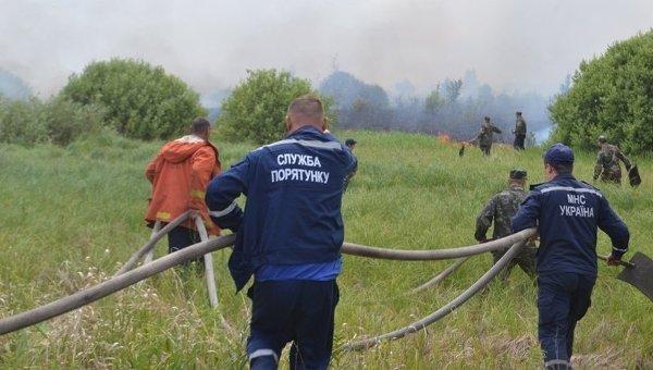 Пожар в Чернобыльской пуще. Киевская область, Украина