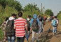 Беженцы, не успевшие пересечь границу до ее закрытия, бредут вдоль забора в поселка Реске на границе Венгрии