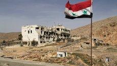 Сирийский флаг. Архивное фото