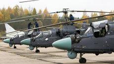 Вертолеты Ка-52 Аллигатор на летно-тактических учениях армейской авиации Западного военного округа в Псковской области