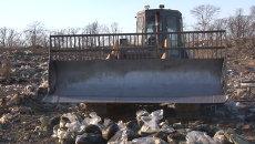 Полтонны черной икры раздавили бульдозером на мусорном полигоне