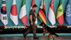 Полицейский с собакой перед церемонией встречи лидеров G20. Архивное фото