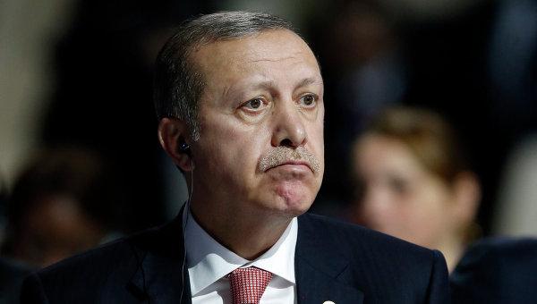 Президент Турции Тайип Эрдоган на климатической конференции ООН в Париже. Архивное фото