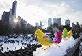 Игрушечные птицы на фоне катка в Центральном парке Нью-Йорка