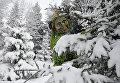 Актер в костюме Шурале (Леший) в резиденции Кыш Бабая и Кар Кызы в селе Яна Кырлай Арского района Республики Татарстан