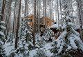 Гостевой дом в лесу на территории туристического комплекса Карьяла Парк