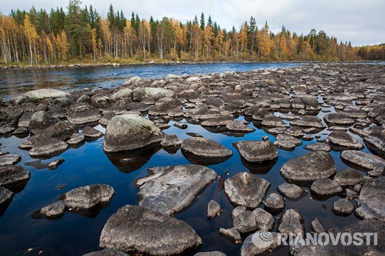 Река Лужма в Медвежьегорском районе Республики Карелия