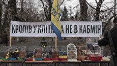 Барабаны, чучело Яценюка и клетки с кроликами на митинге у Рады в Киеве