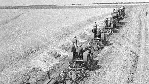 Уборка урожая. Украина. 1935 год