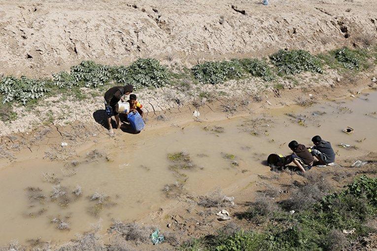 Дети набирают воду из реки в Багдаде, Ирак