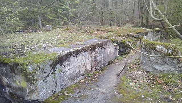 Приборы показали наличие тоннеля наместе поисков «золотого поезда» нацистов