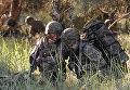 """Солдаты польской армии во время учений НАТО """"Анаконда-2016"""""""
