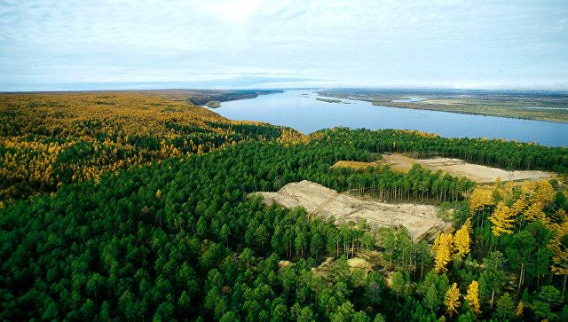 Власти Якутии: ситуация в подтопленной Березовке находится под контролем