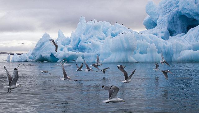 Айсберг в бухте Тихая, Земля Франца-Иосифа, национальный парк Русская Арктика