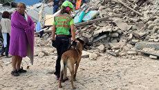 Спасатели в пострадавшем от землетрясения итальянском Аматриче. 24 августа 2016