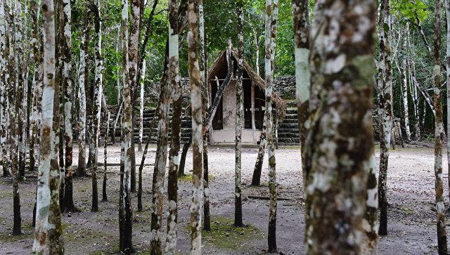 Найдена причина исчезновения цивилизации майя