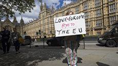 Женщина с плакатом у здания парламента в Лондоне