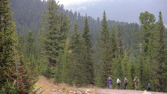 Туристы в природном парке Ергаки