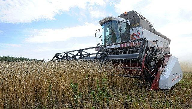 В Оренбуржье построят оптово-распределительный центр агропродукции