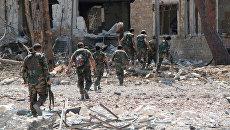 Сирийская армия в Алеппо. Архивное фото