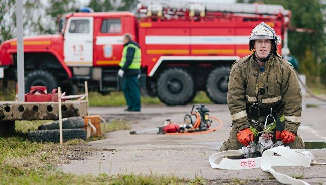 В Приморье нашли массовые нарушения в предупреждении лесных пожаров