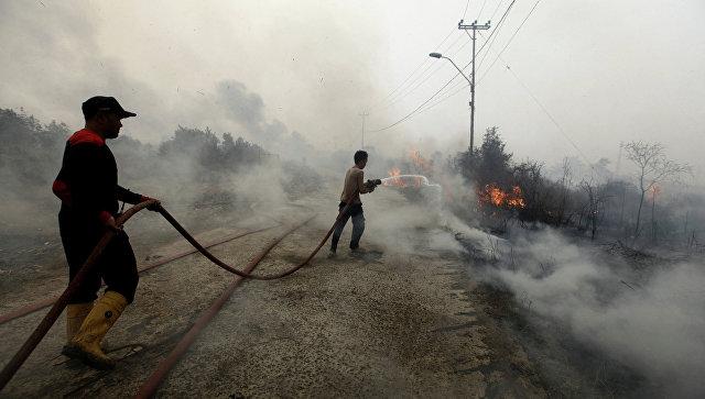Пожарные тушат лесной пожар в Индонезии. Архивное фото