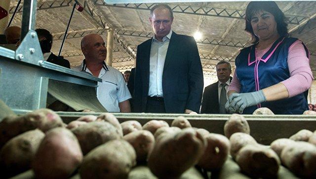Владимир Путин: «ВТюменской области накоплен успешный опыт развития сельскохозяйственной кооперации»