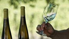 Винодельческое хозяйство. Архивное фото