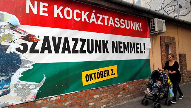Картинки по запросу Референдум в Венгрии