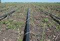 Ситауция с пресной водой в Крыму
