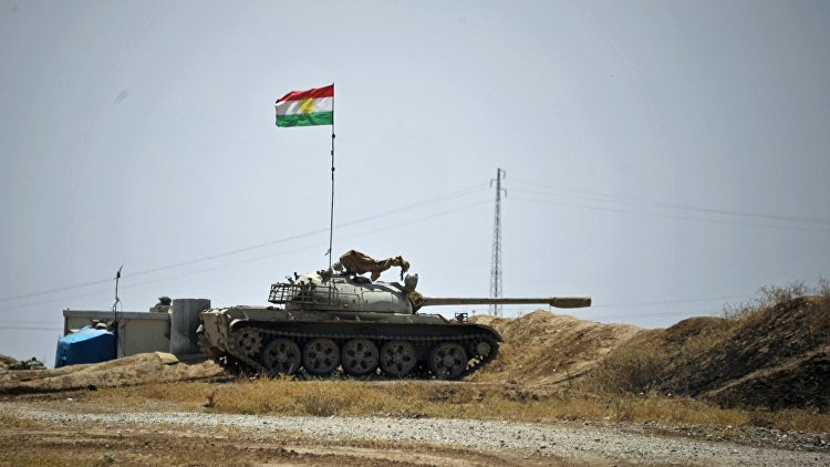 Путин: Россия не решает проблемы курдов в Сирии