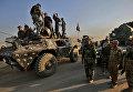 Колонна правительственных сил во время наступления на Мосул в Ираке