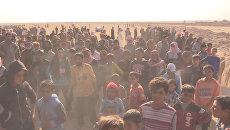 Беженцы из Мосула после начала операции против ИГ вышли к границе с Сирией