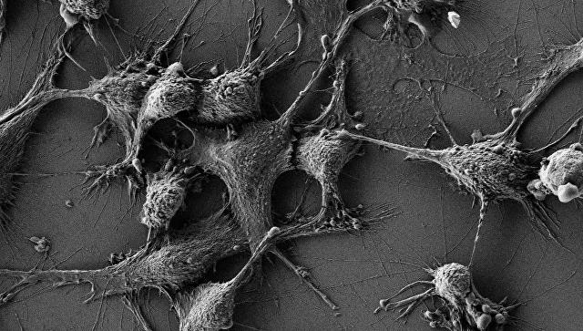 Томские ученые обнаружили наночастицы, способные защитить тело от радиации