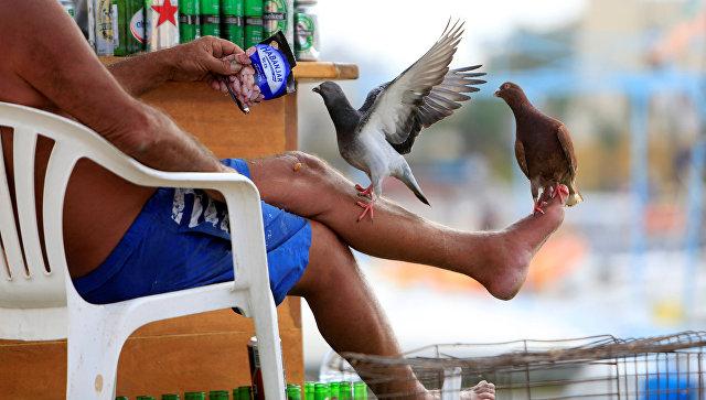 Мужчина кормит голубей в старом городе Тир. Ливан, 12 ноября 2016